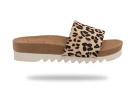Sandal Slide Tooth Wedge Cork Camel Leopard
