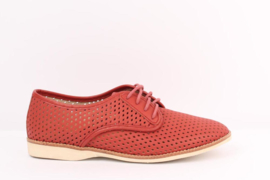 Derby Punch Red