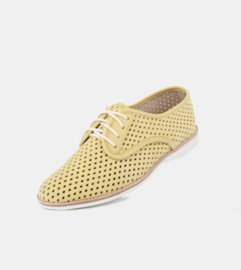 Derby Punch Yellow Suede
