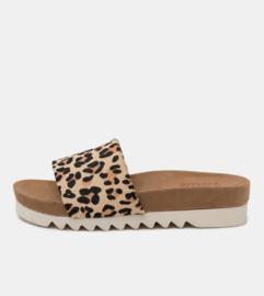 Sandal Slide Tooth Wedge Camel Leopard