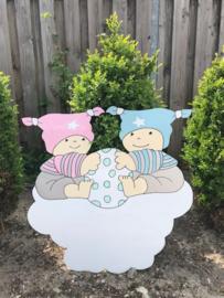 twee babys op wolk