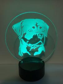 Led verlichting Rottweiler
