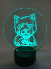 Led verlichting Yorkshire Terrier