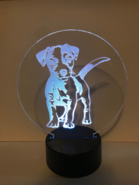 Led verlichting Jack Russell
