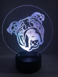 Led verlichting Engelse Bulldog