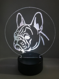 Led verlichting Franse Bulldog