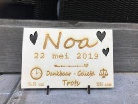 Geboorteschilderij met naam (lettertype Noa)