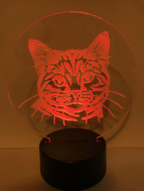 Led verlichting poes