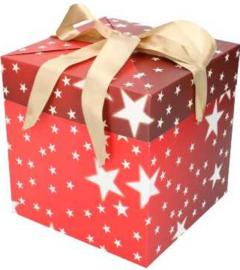 Kerstdoos cadeaudoos vierkant met gouden strik 20cm (draaideksel)