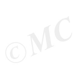 Sticker - Eigen tekst / maatwerk
