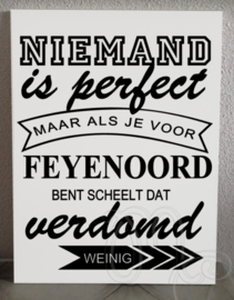 Feyenoord niemand is perfect