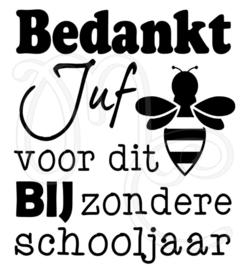 BIJzonder schooljaar