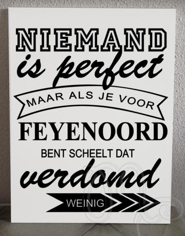 Feyenoord niemand is perfect