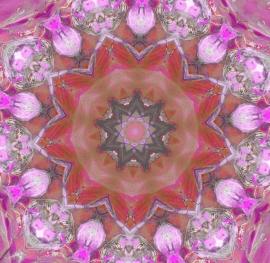Mandala roze/rood 5