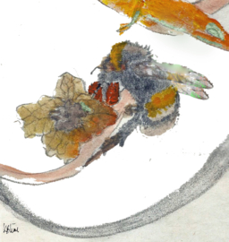 Aardhommel met zakje wilde bloemenzaden