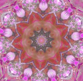 Kaleidoscope 8 (dubbel klein formaat)