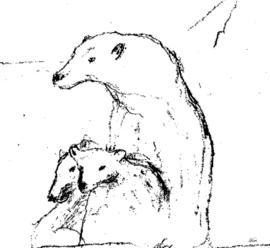 IJsberen Dubbele kaart met envelop