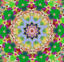 Kaleidoscope 6 (dubbel klein formaat)