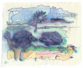 Twee egeltjes  (N5)