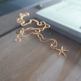 Tiny Starfish Necklace - 925 Gold