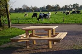 Picknicktafel ''De Edervener''
