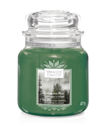 Yankee Candle Evergreen Mist Medium Jar