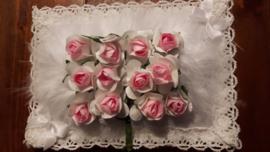 Wit met rose