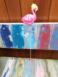 Flamingo met bloem