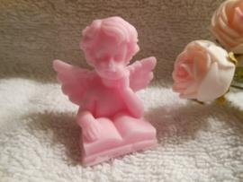 Kleine engel met boek