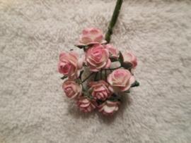 Rose/creme