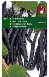 Spercieboon,   paarse stokboon Blauhilde 3082