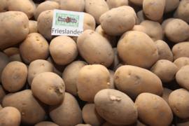 Pootaardappelen Frieslander 0.5 kilo