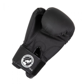BOOSTER Boxing approved