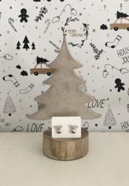 Kerst oorbellen Rudolph zilverkleurige