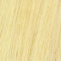 Goud Blond #24 krul per 25 st