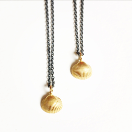 Gouden zeeschat