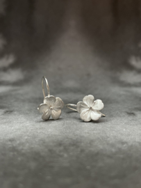 Bloom hangoorbelletjes