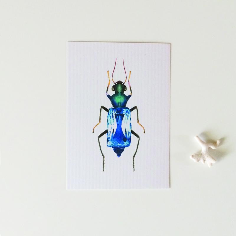 KAARTJE | blauw diamantkevertje