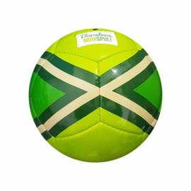 Achterhoekse mini bal