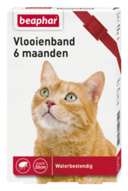 Vlooienband kat rood 1st