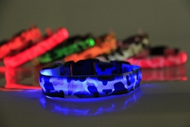 LED hondenhalsband - met print