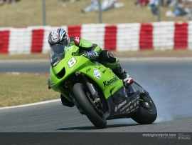 1;24<>KAWASAKI ZX-RR   MotoGP 2003    Garry McCoy #8