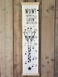 Groeimeter Giraffe