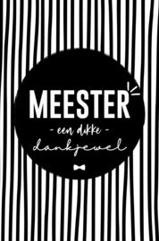 Minikaartje Meester | PS
