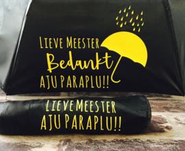 Aju Paraplu Meester