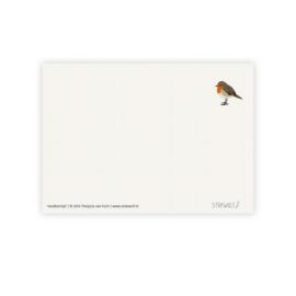 Postkaart - Roodborstje