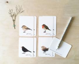 Set Mini kaartjes - Vogels