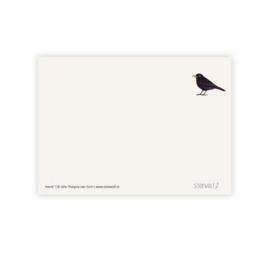 Postkaart - Merel