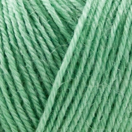 Onion Nettle Sock Yarn - 1021 Lichtgroen