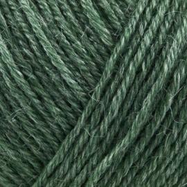 Onion Nettle Sock Yarn - 1006 Groen